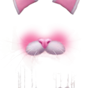 Sear, Nose, Cats, Napchat Filters Png Transparent   PNG Images