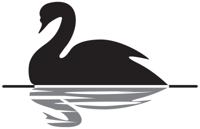 Black Swan Event Picture PNG Images