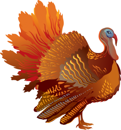 Clipart Turkey Png PNG Images