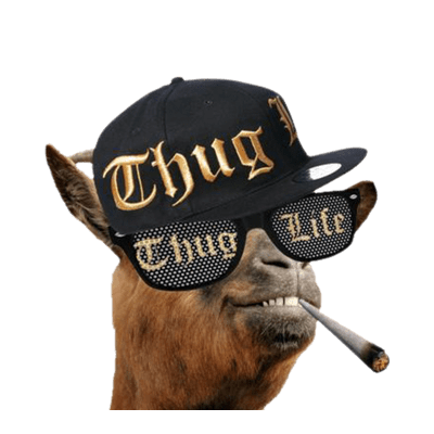 Thug Life Meme Cut Out Png 16 PNG Images