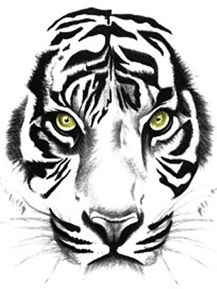 Tiger, Sumatra Tiger, Tierwelt, Tiger Tattoos Clipart
