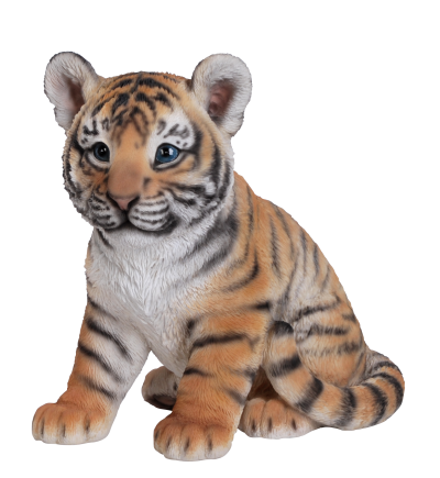 Tiger Cute Baby Png PNG Images