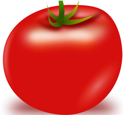 Tomato Single Clipart PNG Images