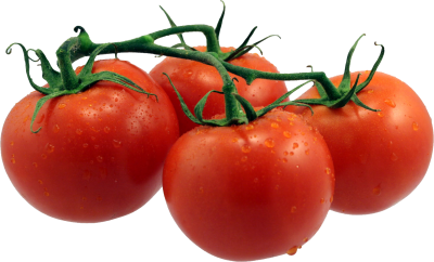 Tomato Vegetable Transparent
