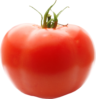 Tomato Picture PNG Images