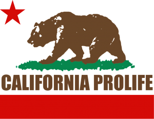 California Bear Flag Symbol