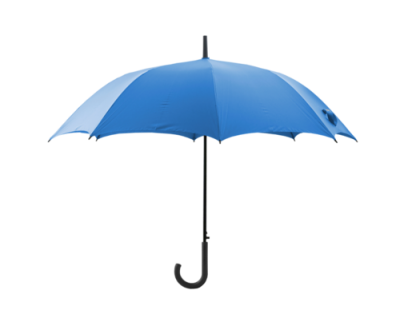 Blue Umbrella Picture