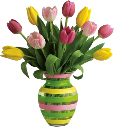 Colorful Rosa Vase Png Transparent Images