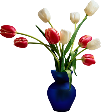 Flowers In Vases Photos