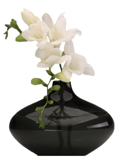 Flowers Vase Png Transparent