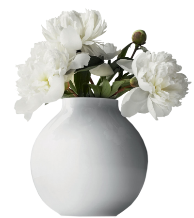 White Flower Vase Pictures