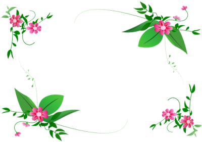 Flower Border Vector Png