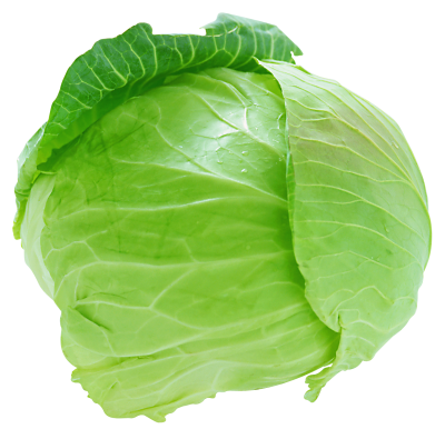 Vegetable Cabbage Transparent