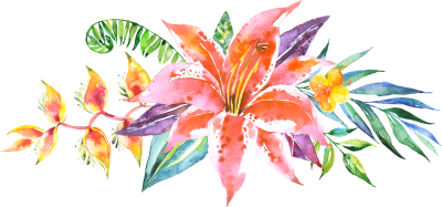 Watercolor illustration Of Flowers Png Picture PNG Images
