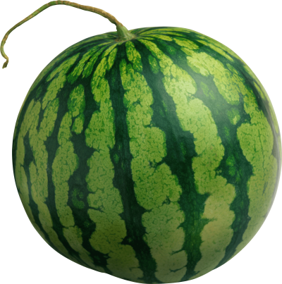 Watermelon Tumblr Png PNG Images
