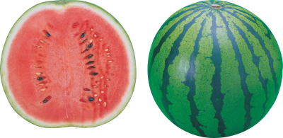 Watermelon Cut Out Picture PNG Images