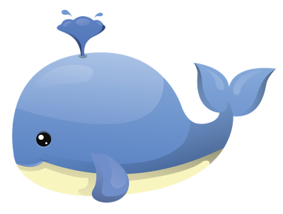 Whale Clipart Photo PNG Images