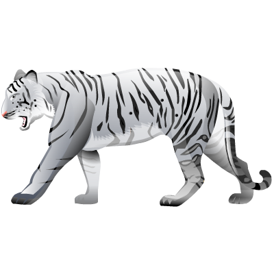 White Tiger High Quality PNG