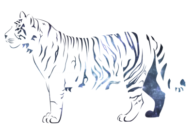 White Tiger HD Photo Png PNG Images