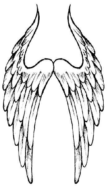 Angel Wings Hd Image PNG Images