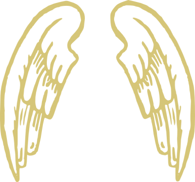 Golden Snitch Wings Clipart PNG Images