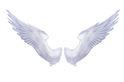 White Angel Wings Tattoo Hd Photo PNG Images