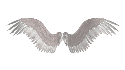Wings Png Transparent PNG Images
