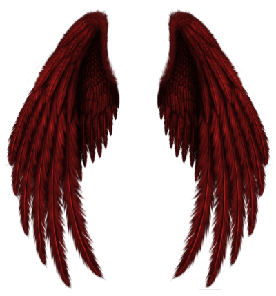 Wings Amazing Image Download PNG Images