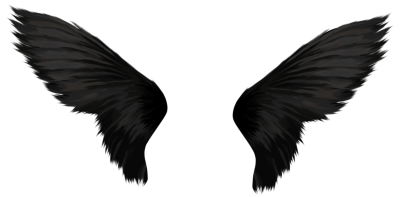 Download Black Wings PNG Images