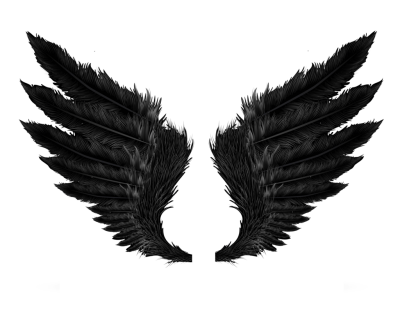 Wings Black Free Cut Out
