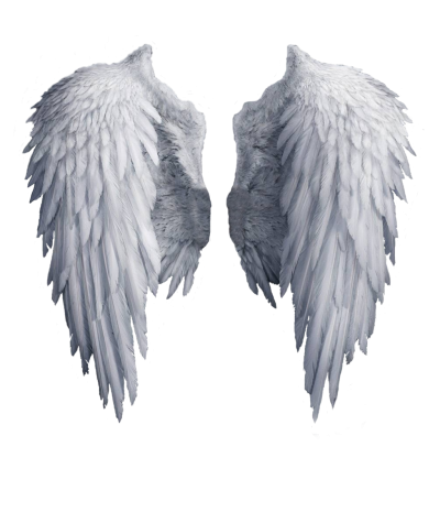 Wings Hd Icon PNG Images