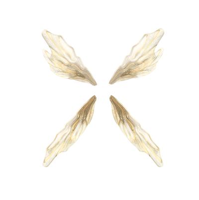 Wings Free Download Transparent