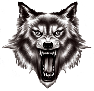 in Those Yellow Eyes Wlof Png PNG Images