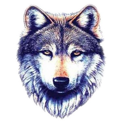 Latest Wolf Tattoo Designs White images PNG Images