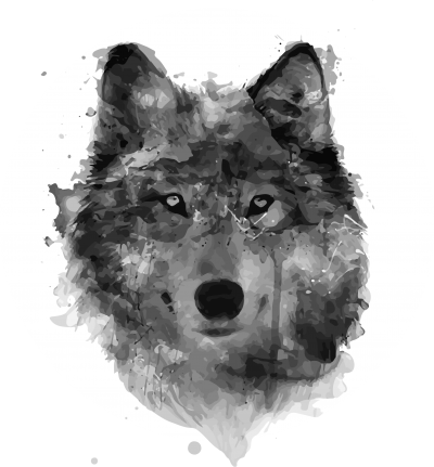 Profit Wolf Tattoos Png PNG Images