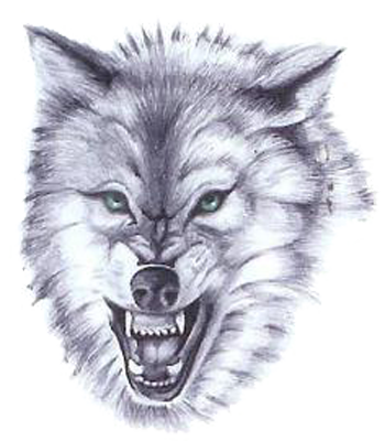 White Wolf Tattoos Designs Pictures PNG Images