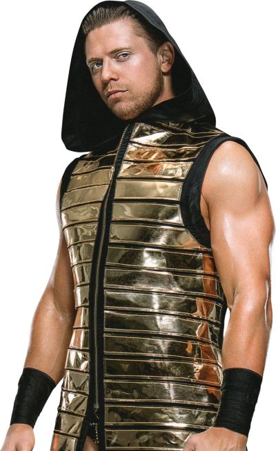 Chest Randy Orton, Wwe Superstars Transparent PNG Images